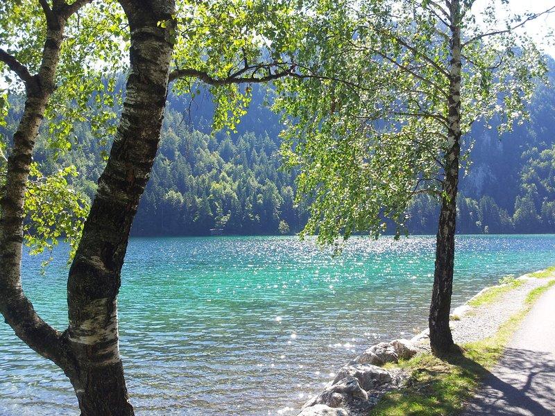 Hintersteinersee - natural jewel - seaside holiday in Tyrol
