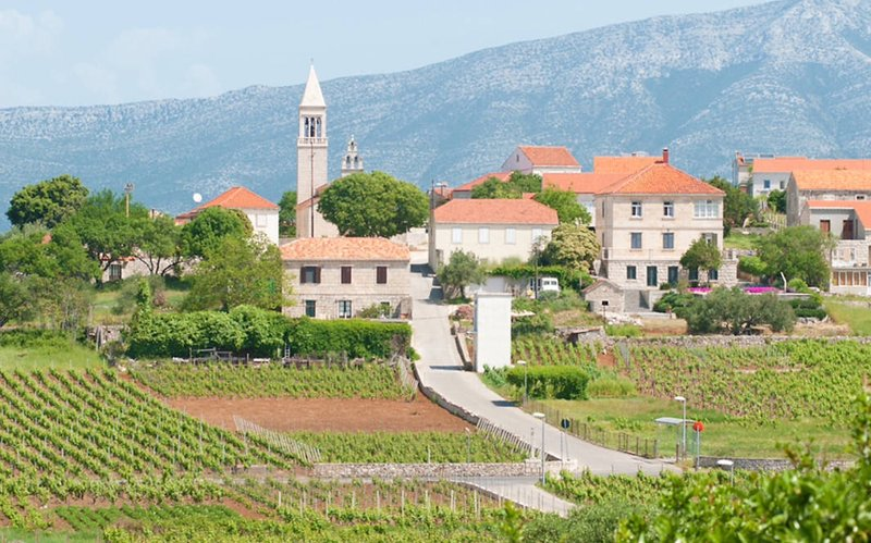 Explore and discover the picturesque Village of Lumbarda. Walk amongst the vineyards, olive trees