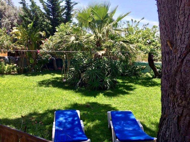 Tranquilidad en Algarve, vacation rental in Algoz
