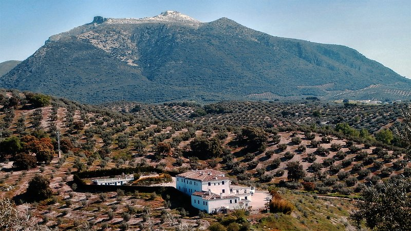 The property is settled on a hill in the Nature Park (La Subbética Cordobesa).