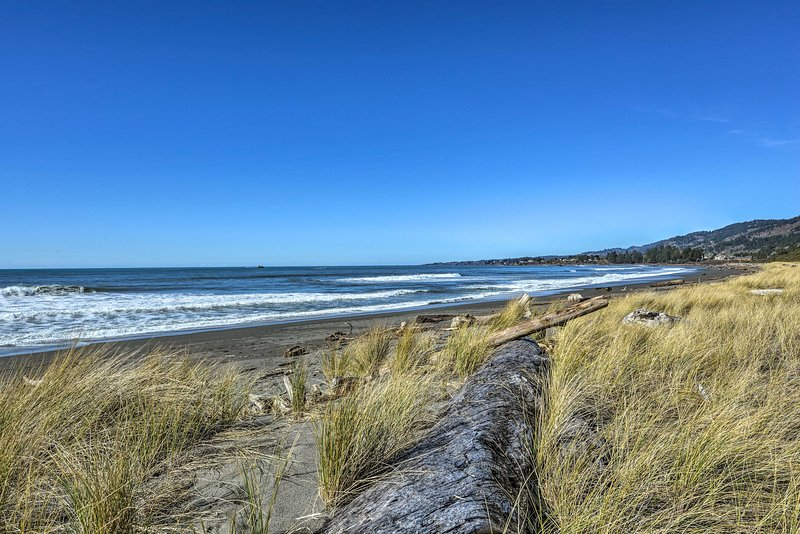 You'll fall in love with the California-Oregon coast from here.