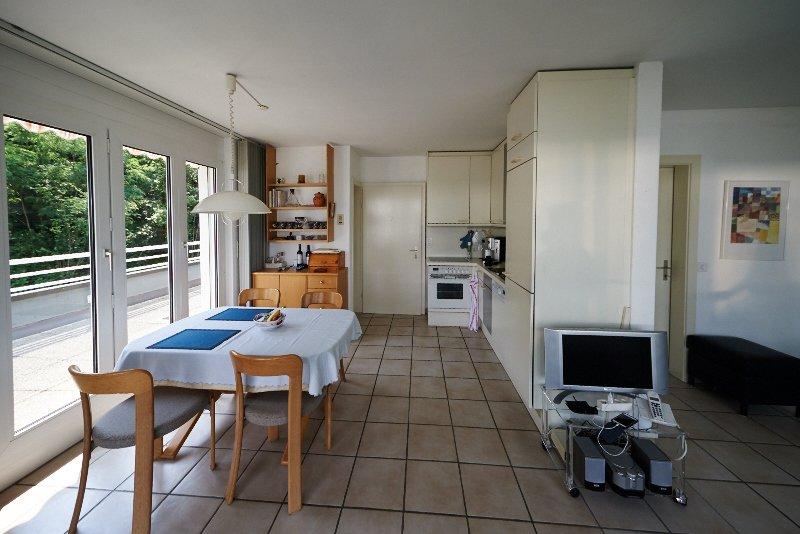 Attika mit grosser Terrasse und Pool, location de vacances à Avegno Gordevio