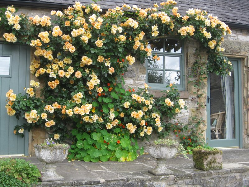 Maigold Cottage, holiday rental in Millers Dale