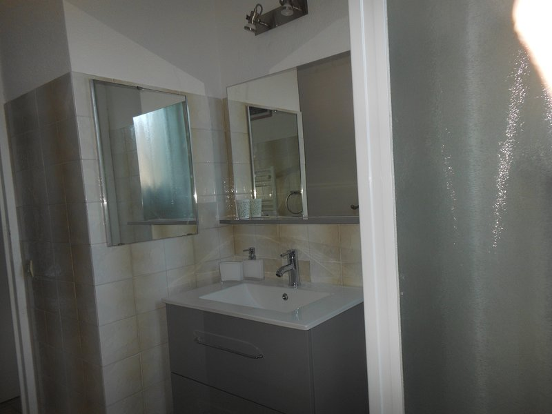 the bathroom his vanity unit and the shower stall