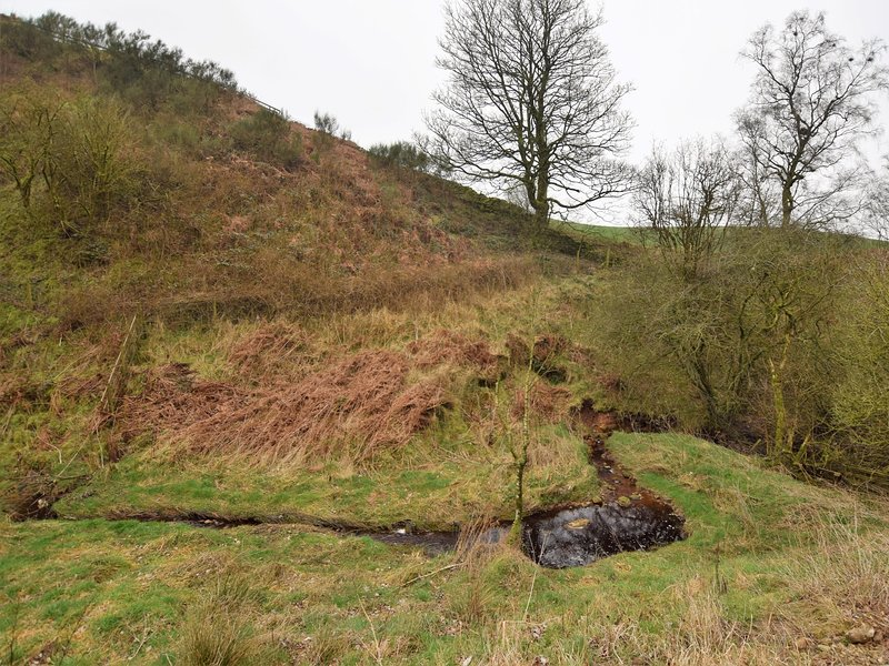 The stream at the bottom of the fell