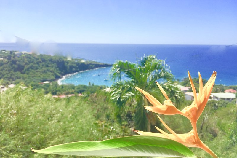 Splendid sea view, in this Roof Top for 5 people at a low price, casa vacanza a Marigot