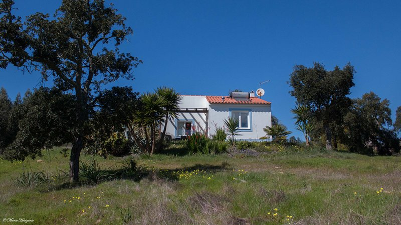 Casa Mimosa - Monte Horizonte - Eco & Nature - Turismo Rural - Casas de Campo, casa vacanza a Vila Nova de Santo Andre