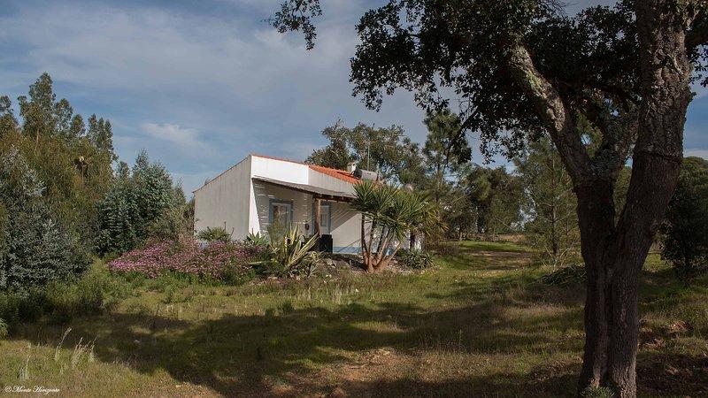 Casa Oliveira - Monte Horizonte - Eco & Nature - Turismo Rural - Casas de Campo, casa vacanza a Vila Nova de Santo Andre