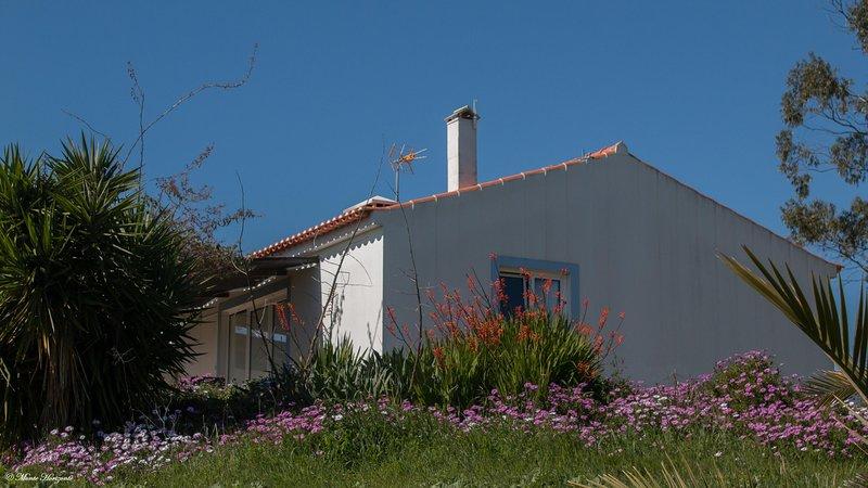 Casa Passaro - Monte Horizonte - Eco & Nature - Turismo Rural - Casas de Campo, casa vacanza a Vila Nova de Santo Andre