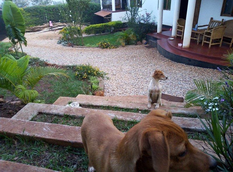 H and T, alquiler de vacaciones en Jinja