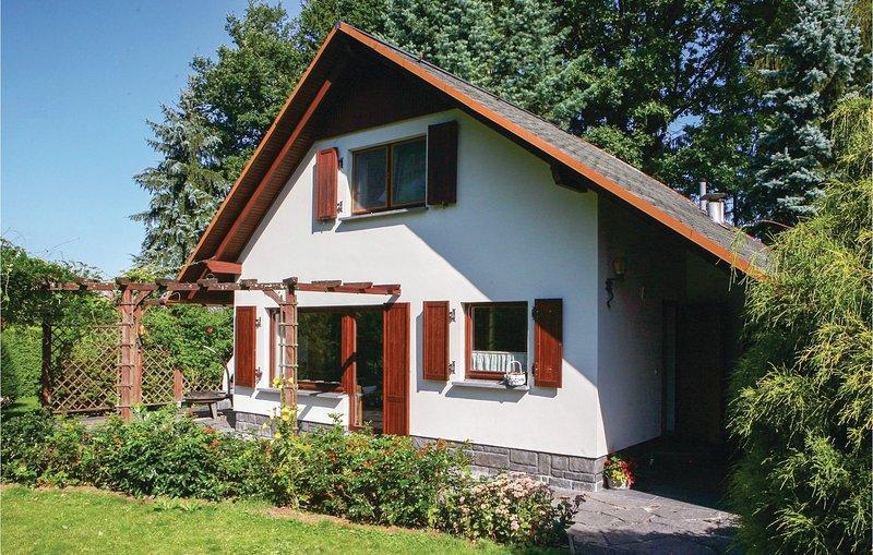 Amazing home in Lengenfeld/Plohn with WiFi and 2 Bedrooms (DSA111), alquiler vacacional en Treuen