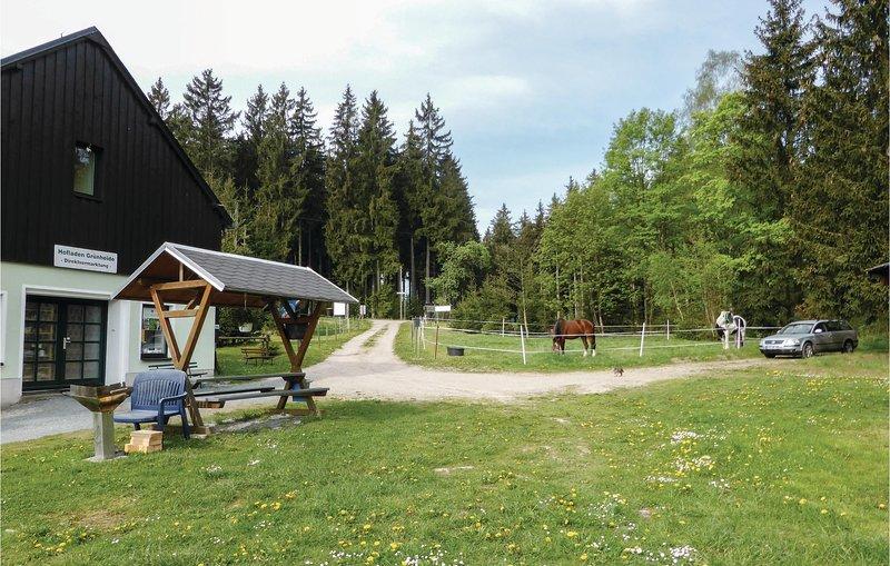 Nice home in Auerbach OT Grünheide with 4 Bedrooms (DSA112), alquiler vacacional en Treuen