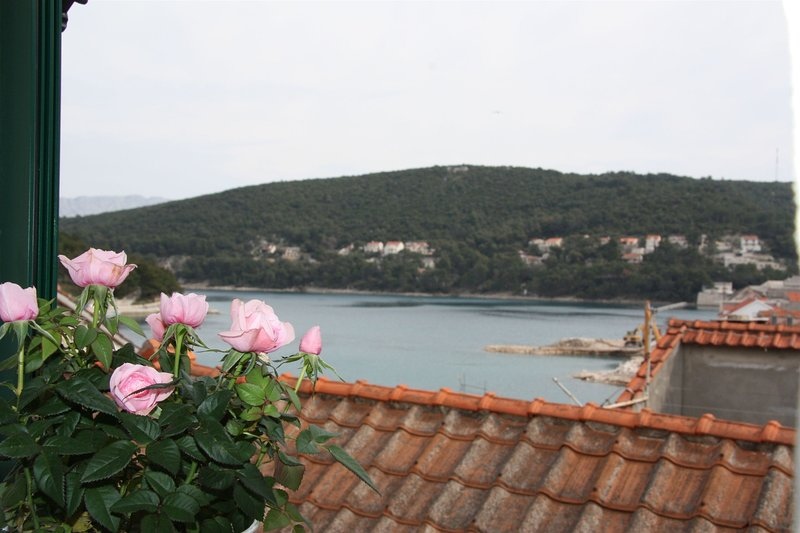 House Sonja, holiday rental in Gornji Humac