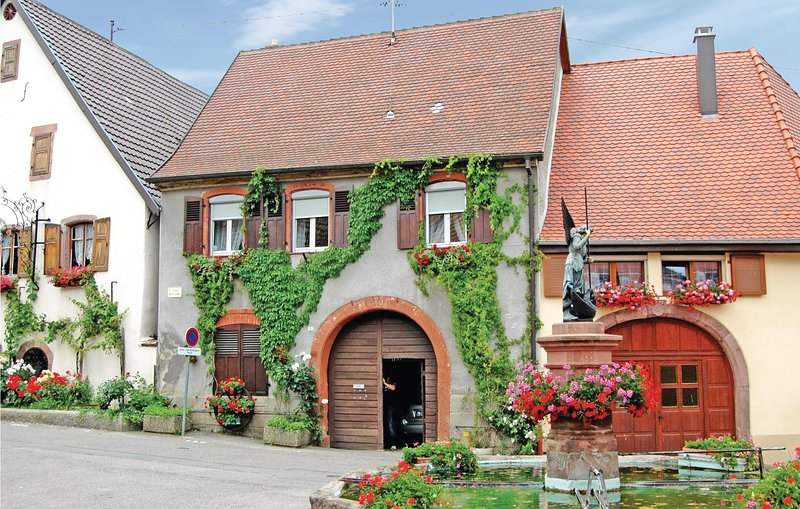 Awesome home in Pfaffenheim with 2 Bedrooms (FDH002), holiday rental in Rouffach