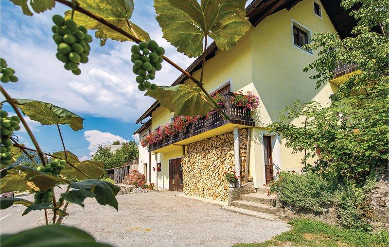 Amazing home in Lokve with WiFi and 3 Bedrooms (CKB230), casa vacanza a Benkovac Fuzinski