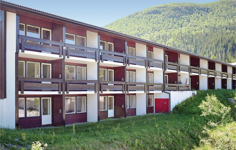 Photo of Beautiful home in Hemsedal w/ WiFi and 1 Bedrooms (N33417)