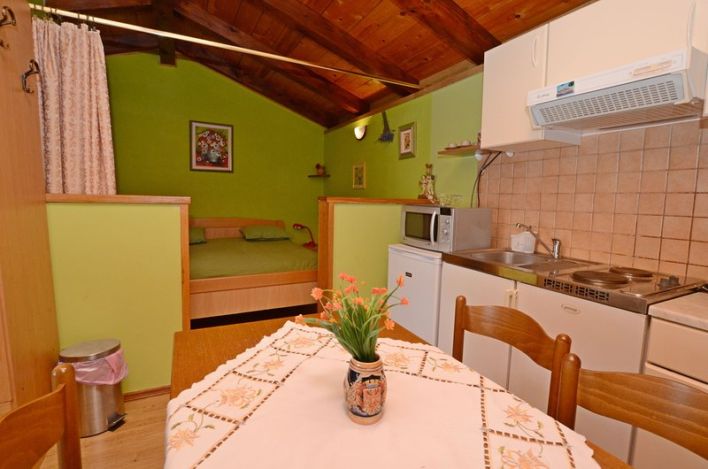 Apartment Amedea, holiday rental in Kanfanar