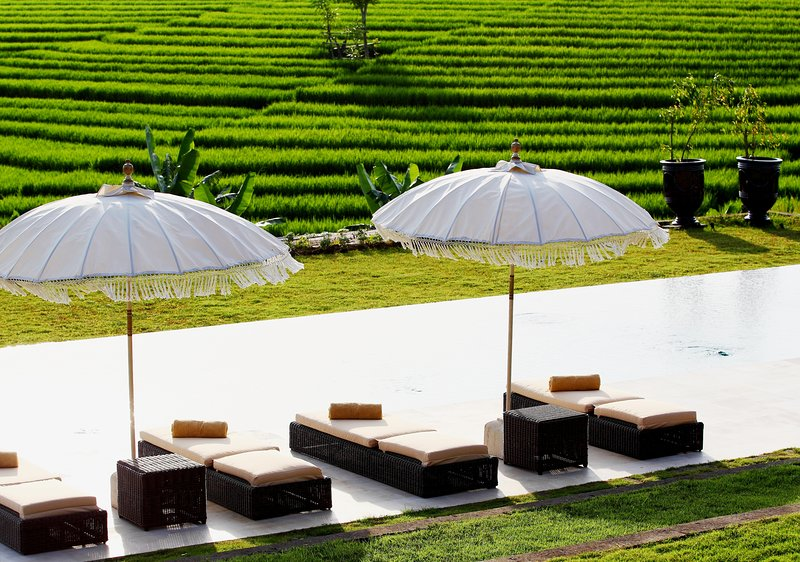 1 BR - COLONY private villa with rice fields panoramic view, holiday rental in Tabanan