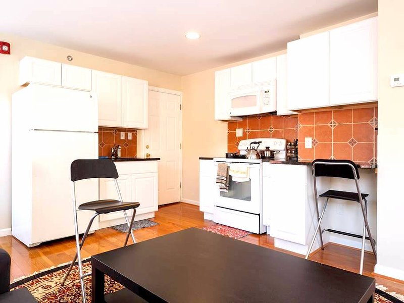 Downtown Corporate Apartment, holiday rental in Edgemere