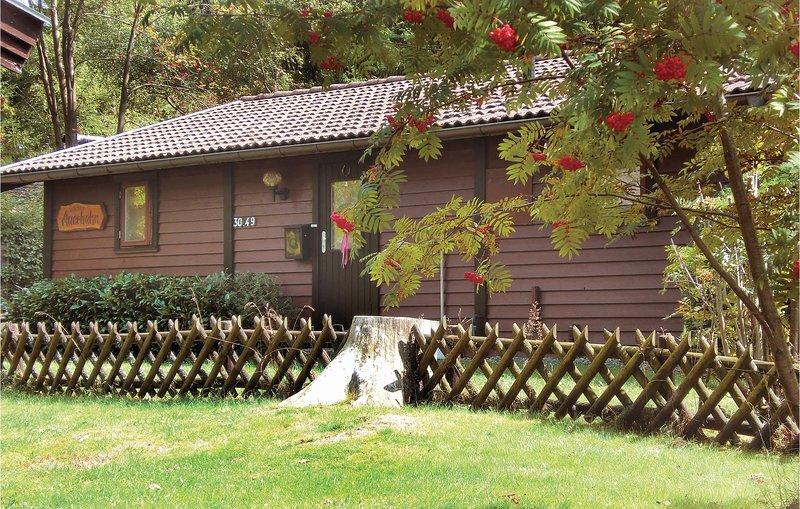Ferienpark Waldsee,Kaminhaus (DAN704), vacation rental in Clausthal-Zellerfeld