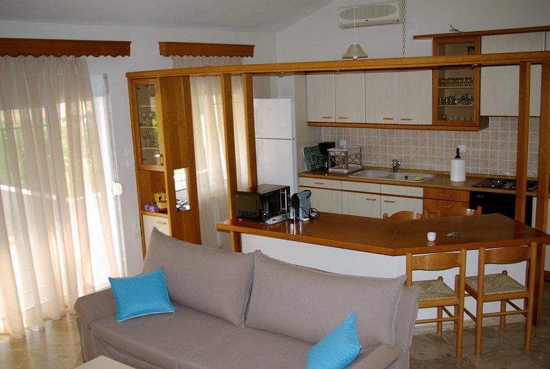 The living room / kichen