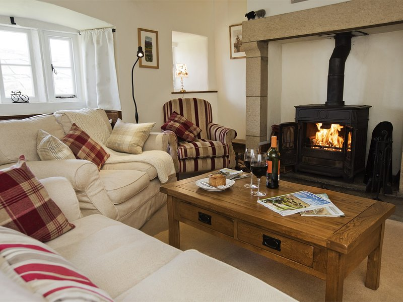 Cosy Lounge with log burning fire