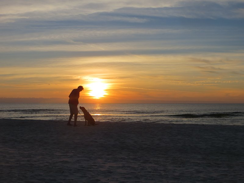 Sunset, the beach, your dog...does it get any better?