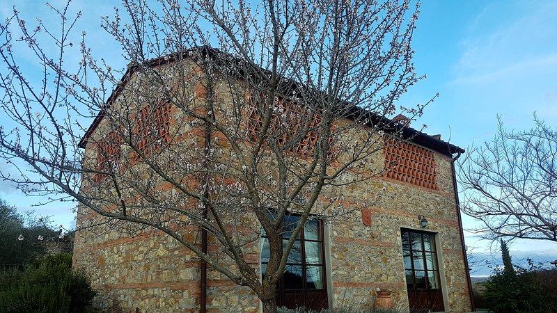 Villa del Falco - Poggio Cennina Country Resort, casa vacanza a Ambra
