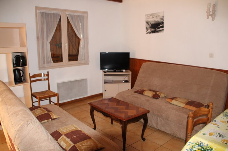Amazing house with mountain view, holiday rental in Viscos