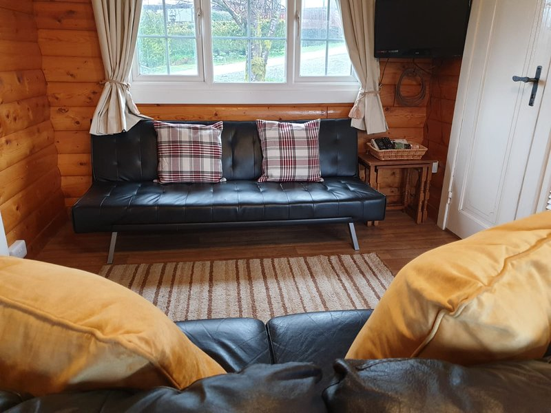 Rural Cabin Treat Nestled In The Snowdonian Mountains, holiday rental in Bronaber
