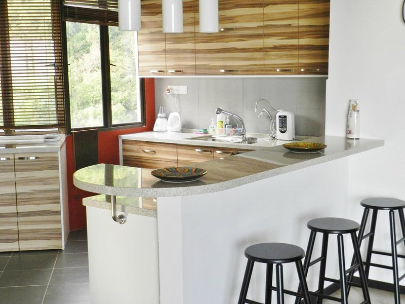 Open Kitchen with Jungle Views