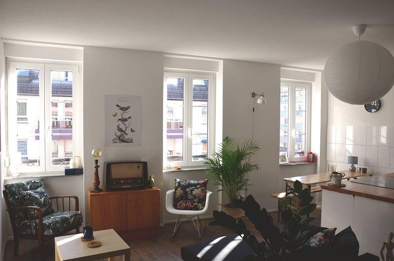 3 pièces lumineux, calme et cosy, tout équipé, vacation rental in Lingolsheim