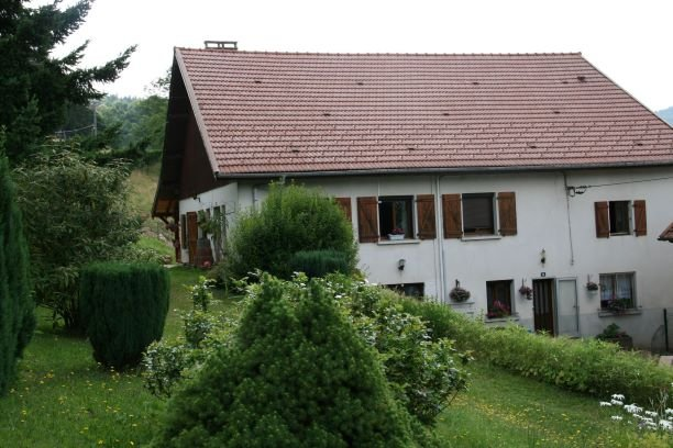 Beautiful house with garden & Wifi, holiday rental in La Croix-aux-Mines