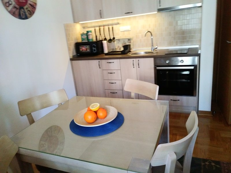 Apartment Bubica Zlatibor best for family holidays and couples in love, vacation rental in Uzice