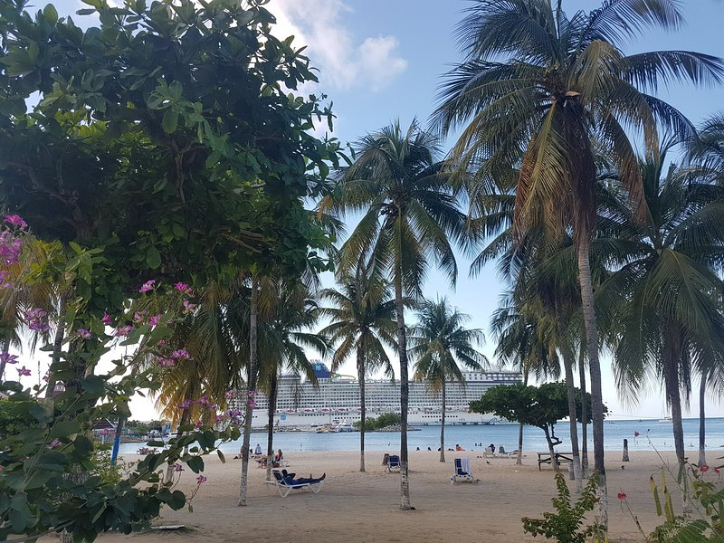 Turtle Beach View.