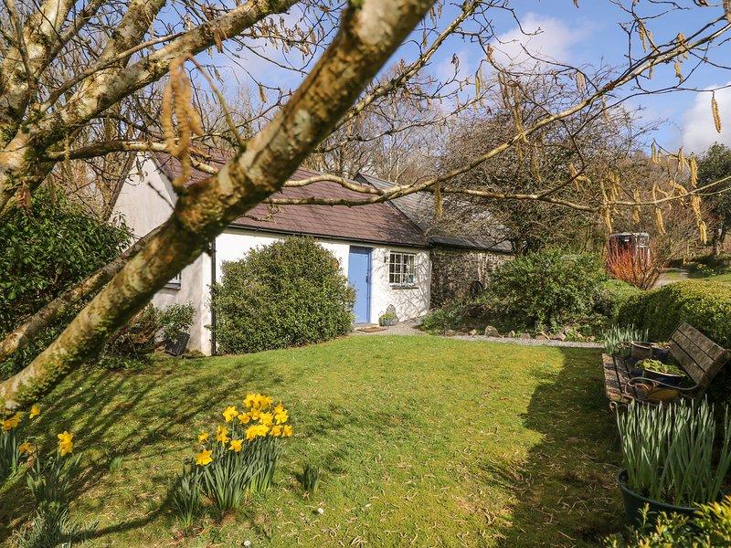 HAWTHORN COTTAGE, lawned garden, WiFi, woodburner, Llandysul, Ref 930004, location de vacances à Llanllawddog