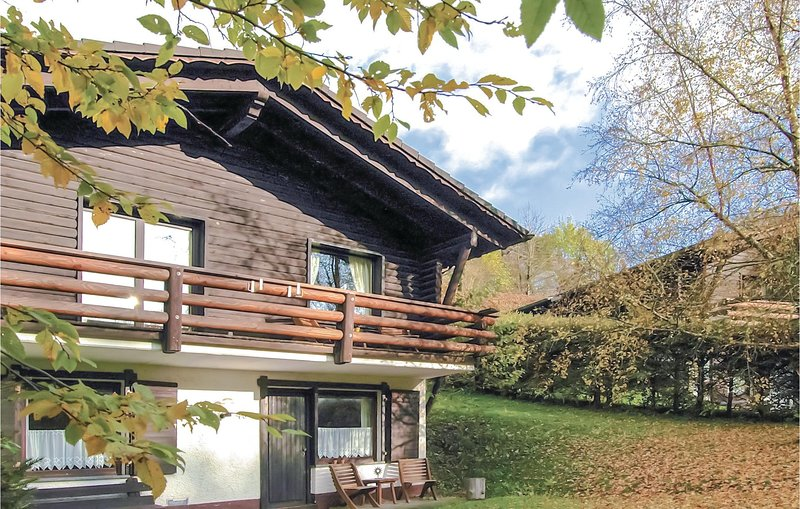 Beautiful home in Schönecken with 2 Bedrooms and WiFi (DEI949), holiday rental in Densborn