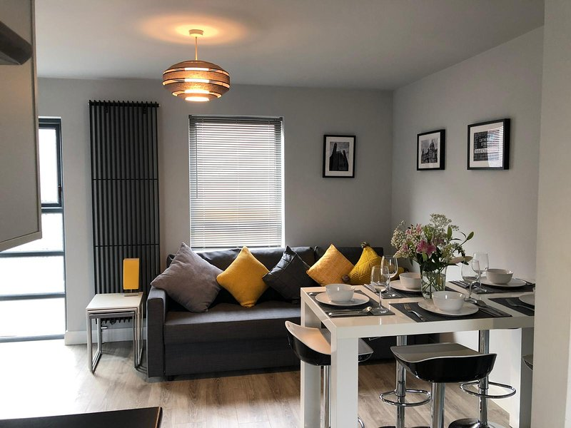 3 BR City Centre House/ Parking/ Experienced Hosts, holiday rental in Holywood