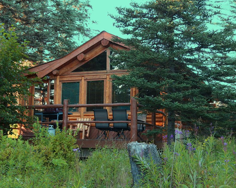 Bear Paw Adventure - Moose Cabin, holiday rental in Ninilchik