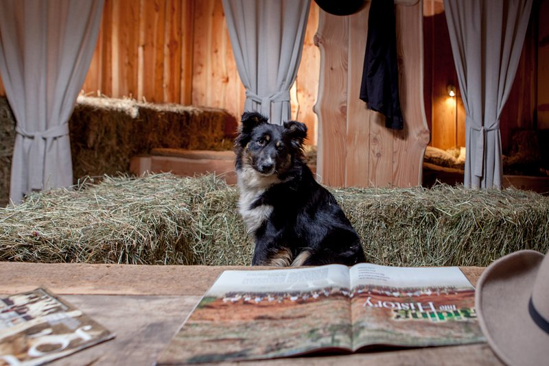 Sleeping on the hay at Farm Volk, vacation rental in Vremski Britof