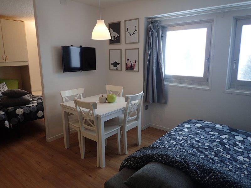 Le salon avec le canapé-lit ouvert