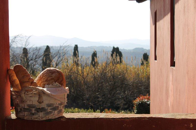 TUSCAN HILLS - TENUTA DI GHIZZANO - SAN PROSPERO E CAMINO  8 - 10 pax, vacation rental in Ghizzano