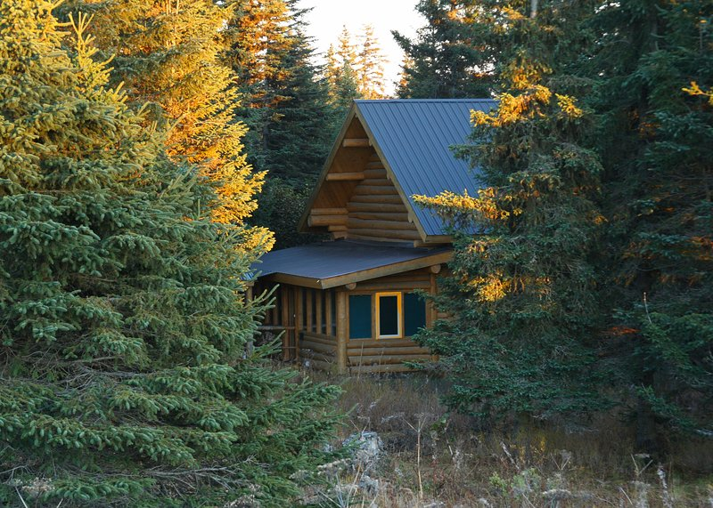 Bear Paw Adventure - Wise Old Hunter Lodge, holiday rental in Ninilchik