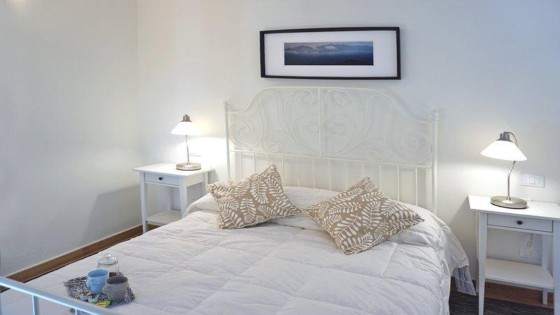 Conte Picedi Vineyard - Albarola, holiday rental in Arcola