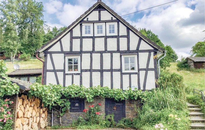 Nice home in Friesenhagen with WiFi and 3 Bedrooms (DWW901), alquiler de vacaciones en Olpe