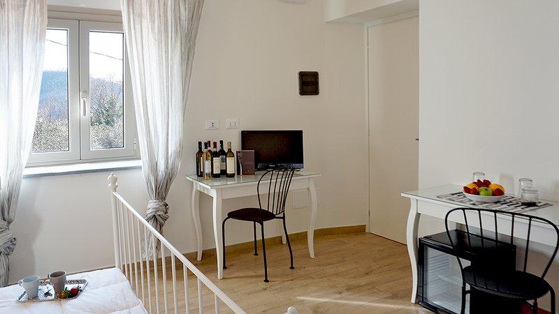 Conte Picedi Vineyard - Ciliegiolo, holiday rental in Arcola