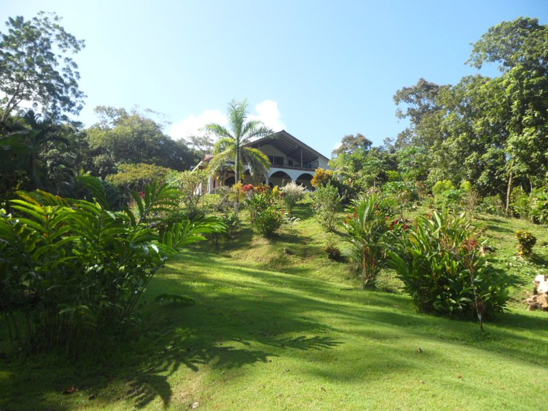 Beautiful'Green'Beachfront Home Secluded Paradise, vakantiewoning in Bocas Town