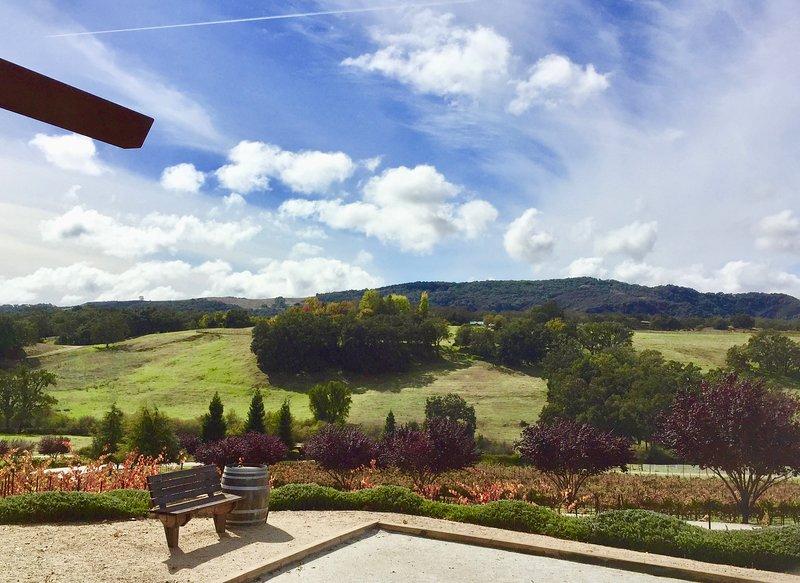Près de chaque incroyable route des vins de la région