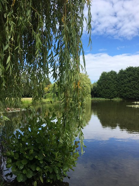 LISMORE -Carentan,Bayeaux,Caen,Normandy,France, holiday rental in Carentan