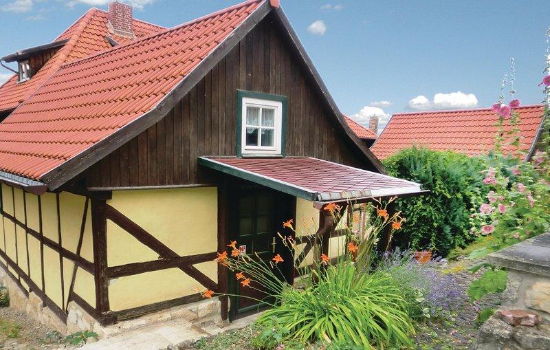 Awesome home in Blankenburg with WiFi and 1 Bedrooms (DAN169), location de vacances à Halberstadt